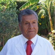 Profesional Médico José Walter Quito Rodriguez