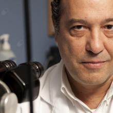 Profesional Médico Fernando Castanera de Molina